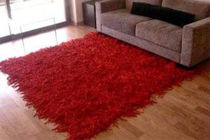 imagen de como evitar que patiene una alfombra con plastidip